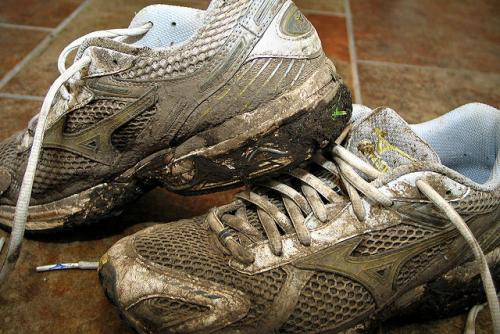 mud_run_training_sneakers.jpg
